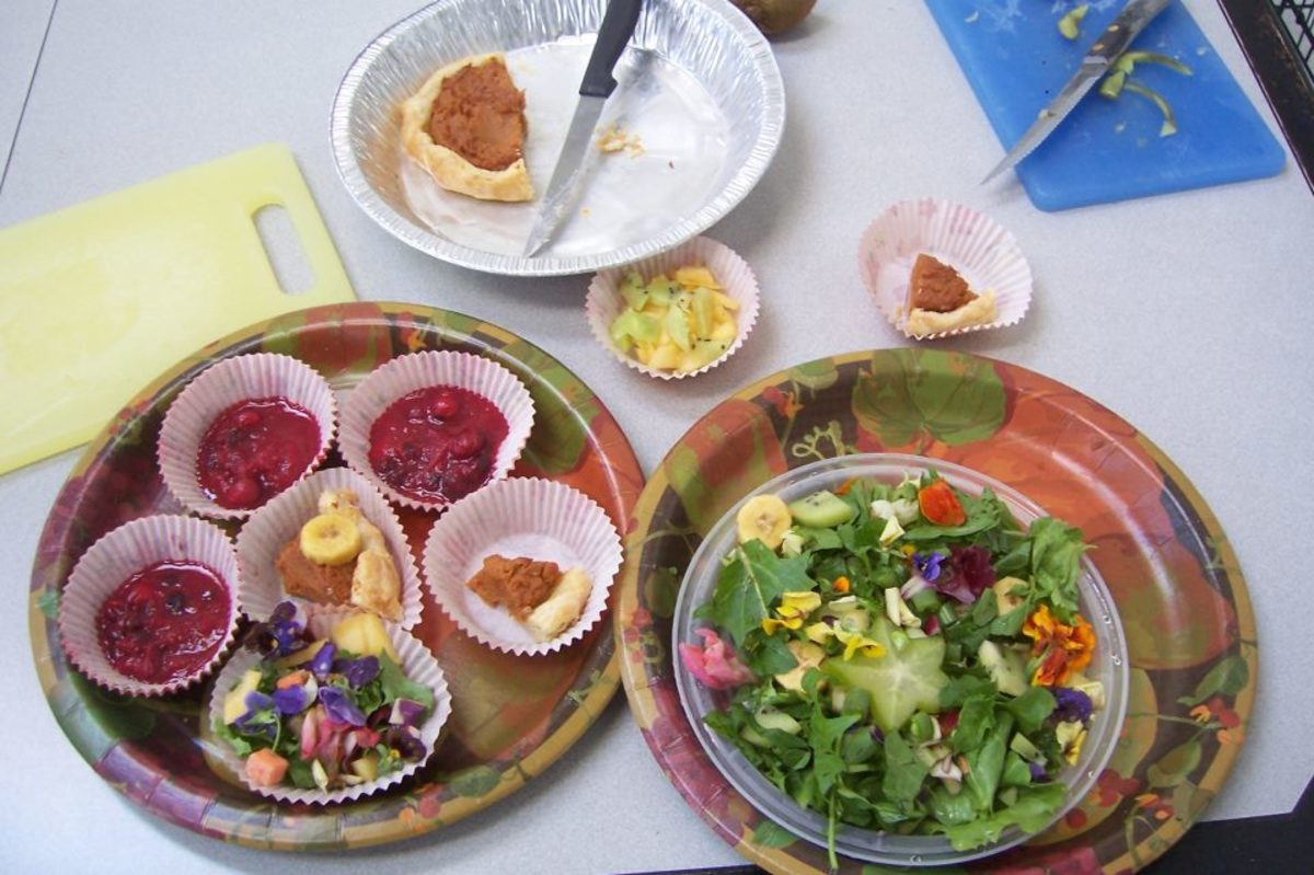 Last year's Thanksgiving meal for my pets, including cranberry sauce, a small sweet potato pie (store-bought crusts, a now make my own healthy option), and a salad for my iguana including edible flowers, fruits, dandelion greens and star fruit.