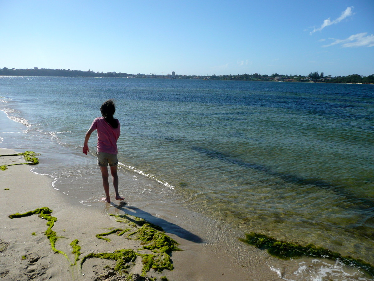 On the shores of the Swan River