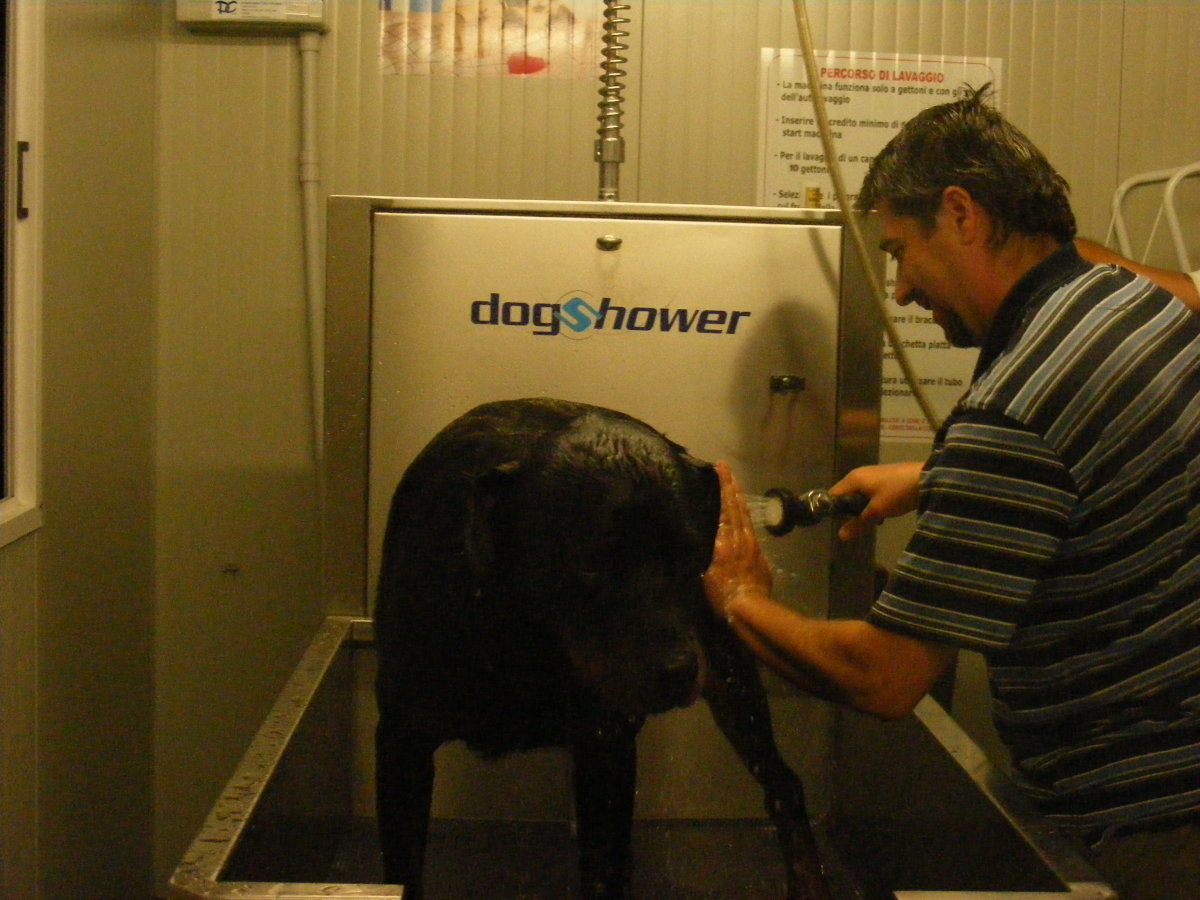 Dog sedatives for grooming