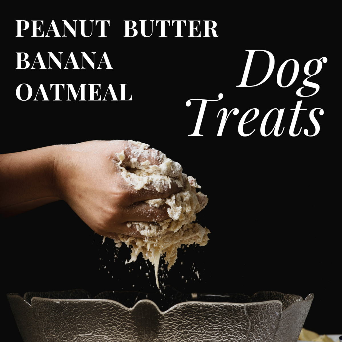 Homemade Dog Treats (Peanut Butter, Banana, and Oatmeal)