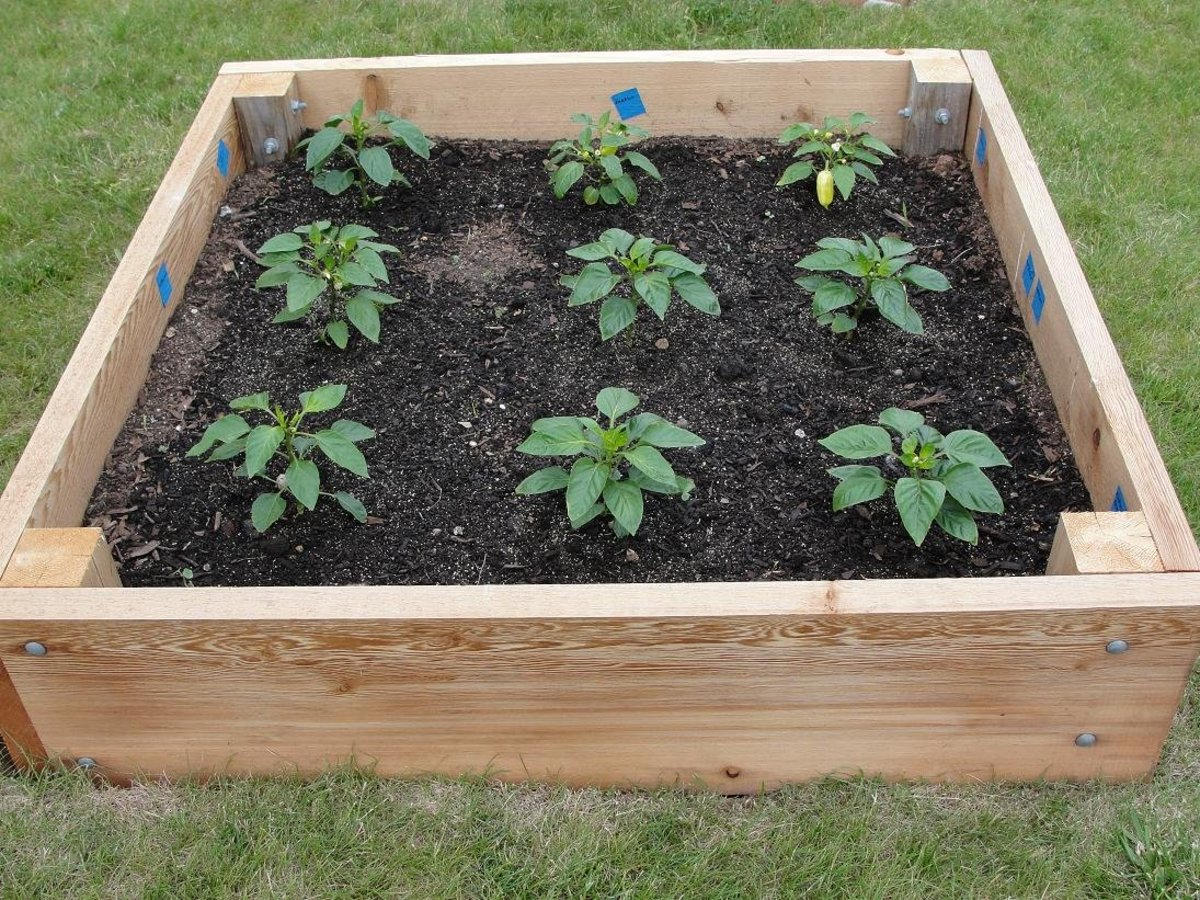raised garden bed plans how to plan a raised garden bed dengarden 28962