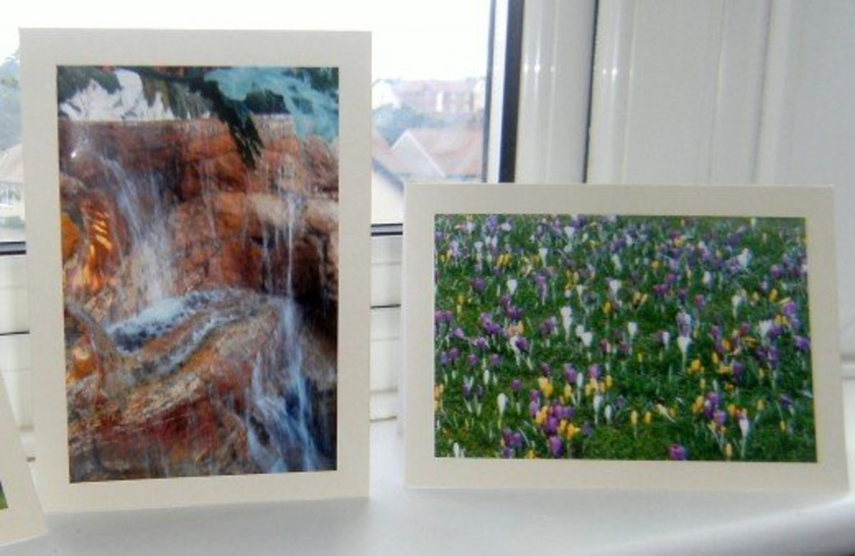 How to create a successful greeting card business from home using photo prints.