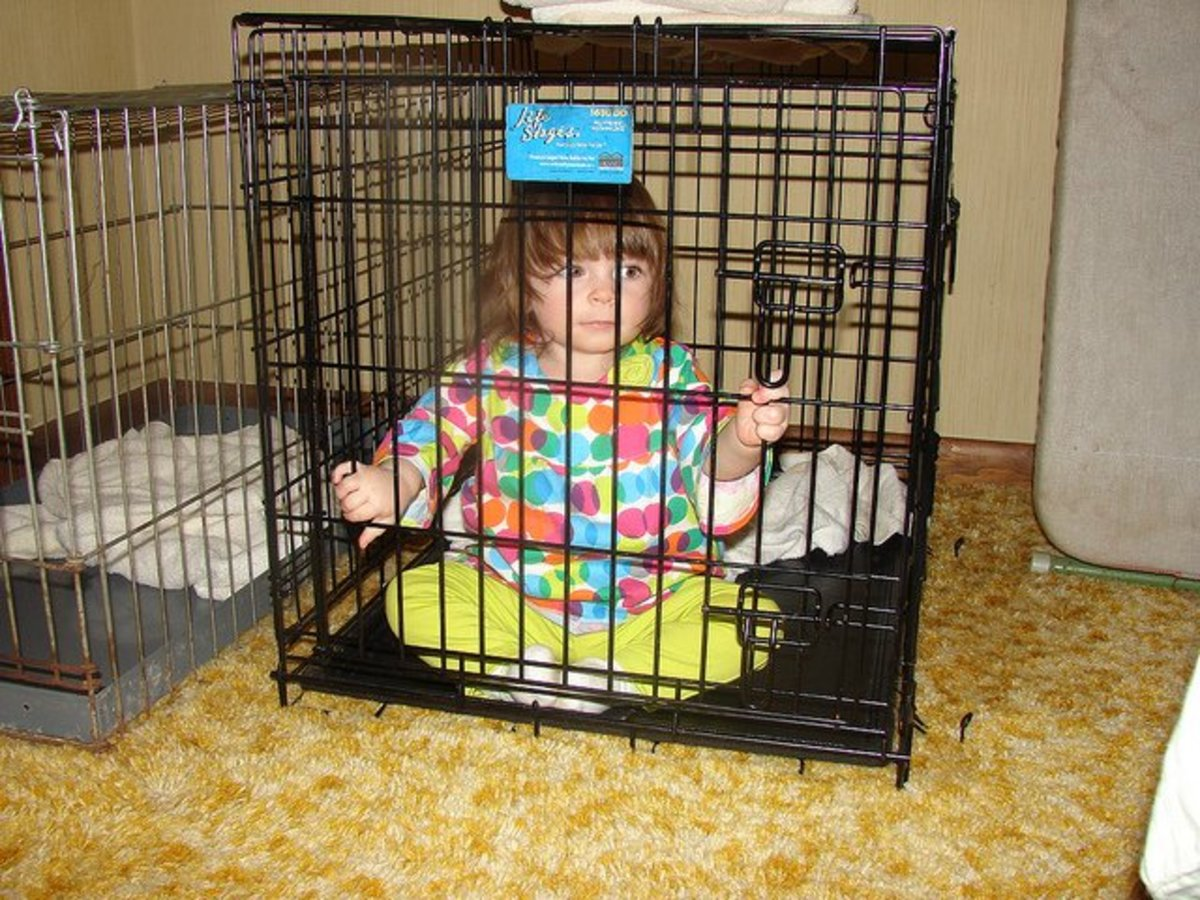 Would you incarcerate other members of your family in a cage?