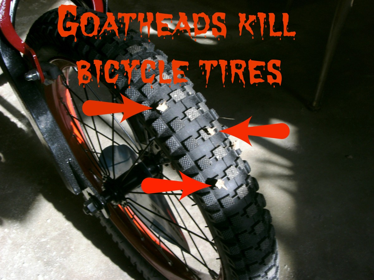 Preventing Bicycle Flat Tires From Goatheads (Puncture Vine Seeds)