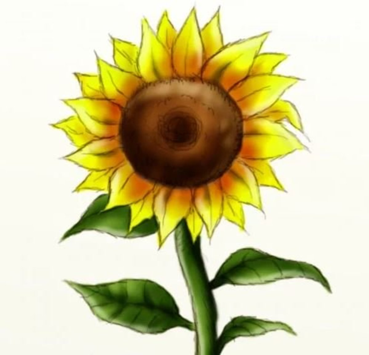 Learn how to draw a beautiful sunflower in just 10 simple steps.