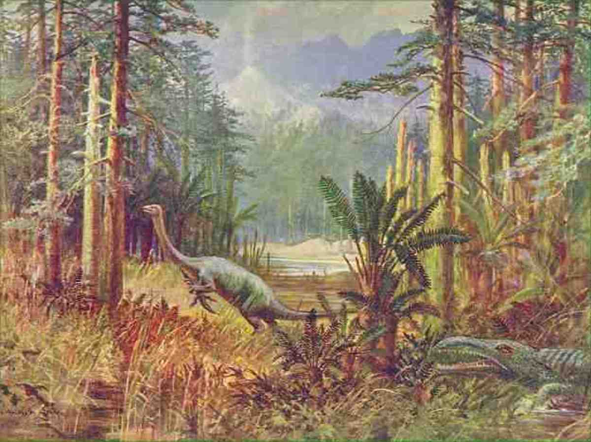 Could some dinosaurs still be alive in the deep jungles of Africa?