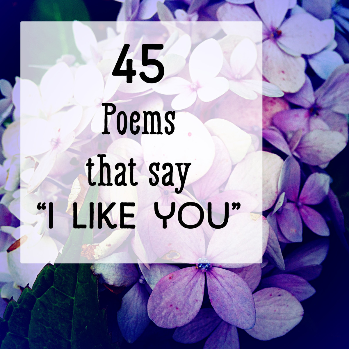 'I Like You' Poems: Short Rhymes and Messages for Guys and Girls