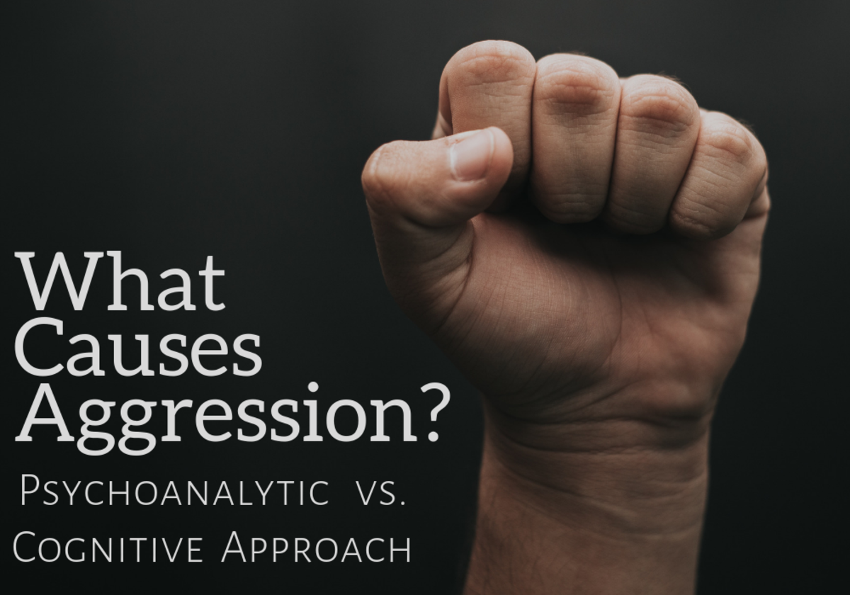 What is the cause of human aggression?