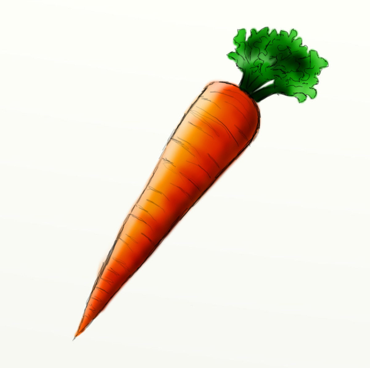 How to draw a carrot | HubPages