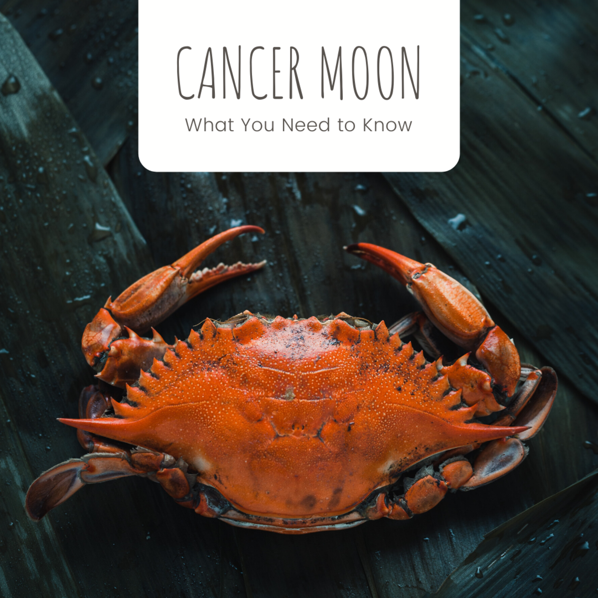 Astrology Signs: Cancer With Moon Signs