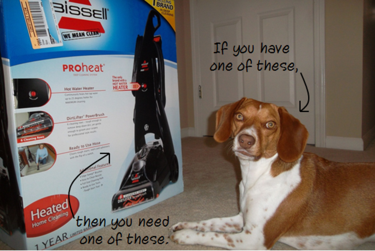 Bissell PROheat Is a Must-Have Deep Cleaner for Homeowners