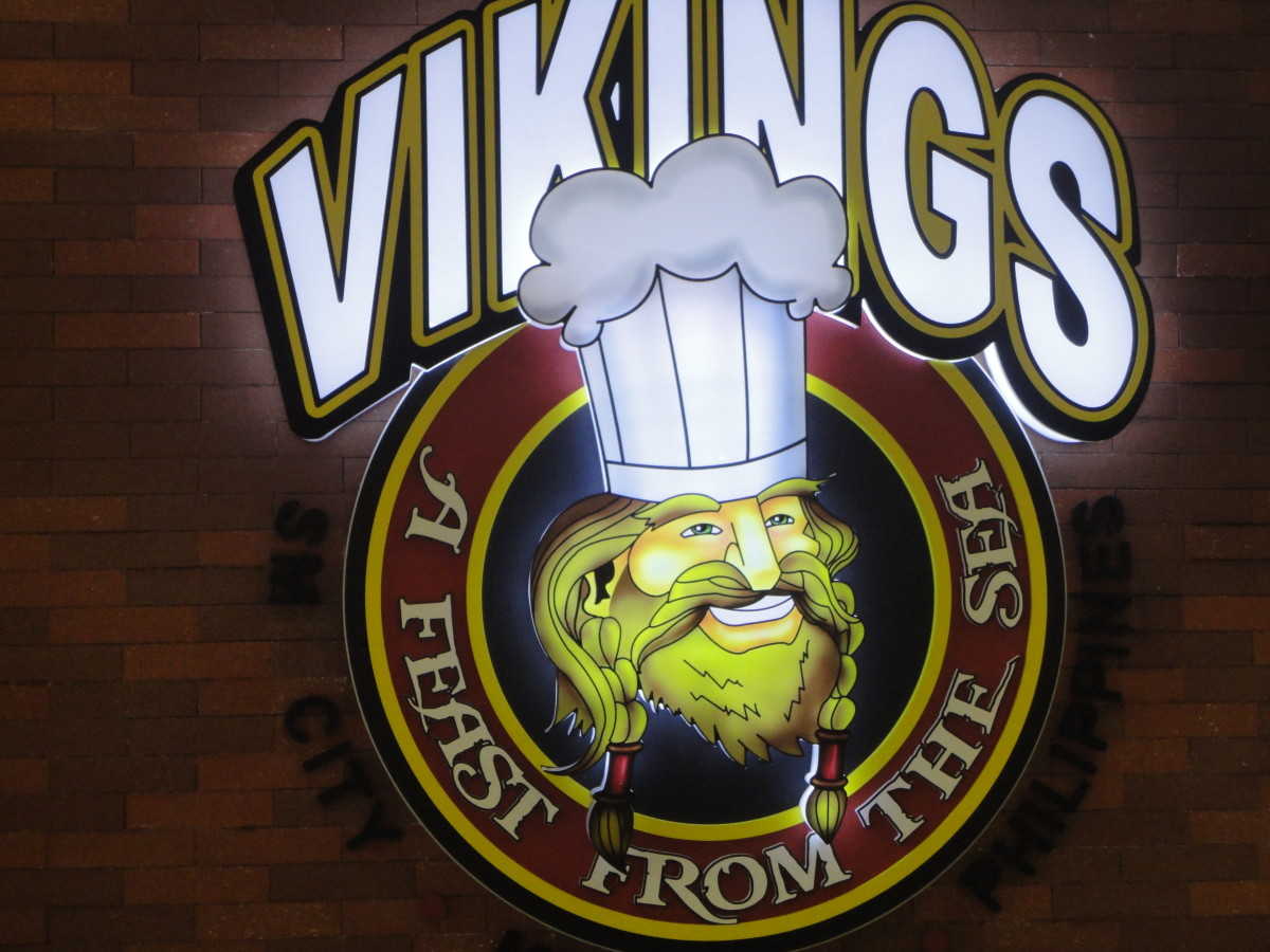 Viking Logo taken by celar