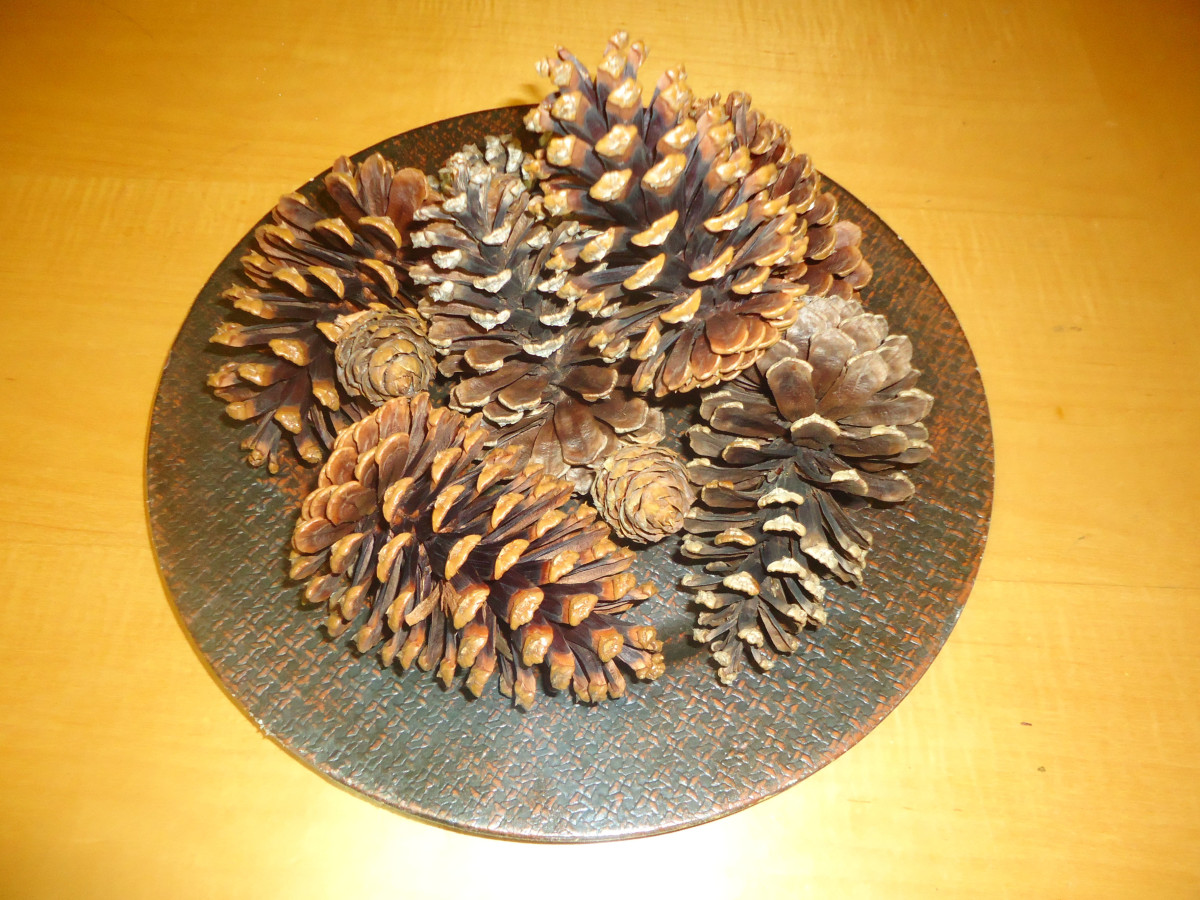 Learn how to make scented pine cones.