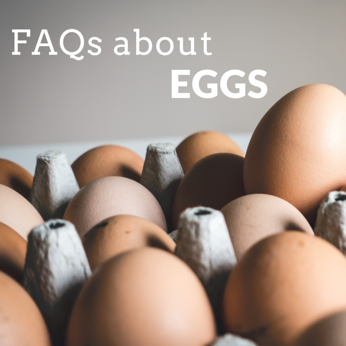 What is the difference between brown and white eggs? Yellow and orange yolks? How can you tell an egg is fresh, fertile, or free-range? These and many more answers await!