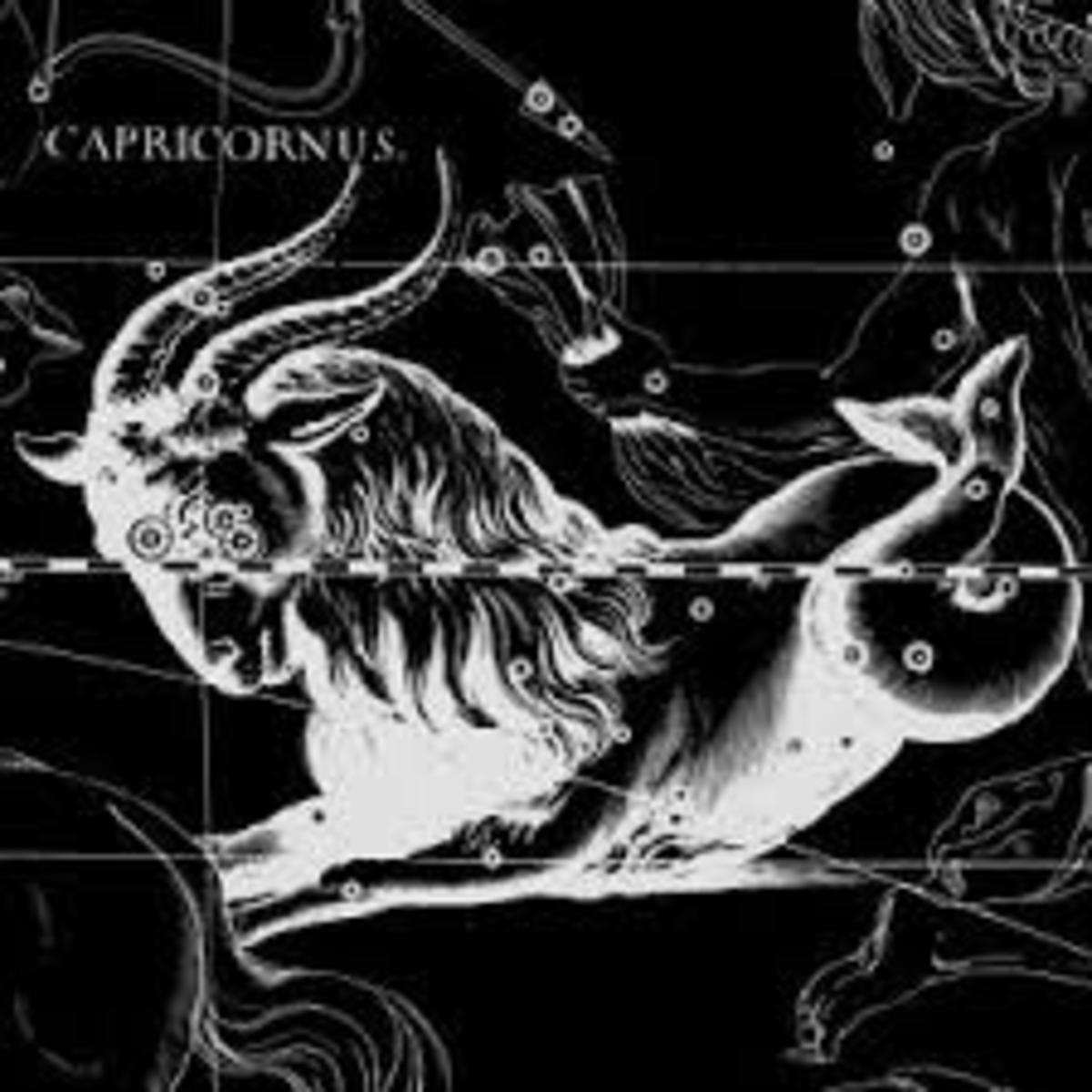 The Coldest Sign in the Zodiac—Capricorn!