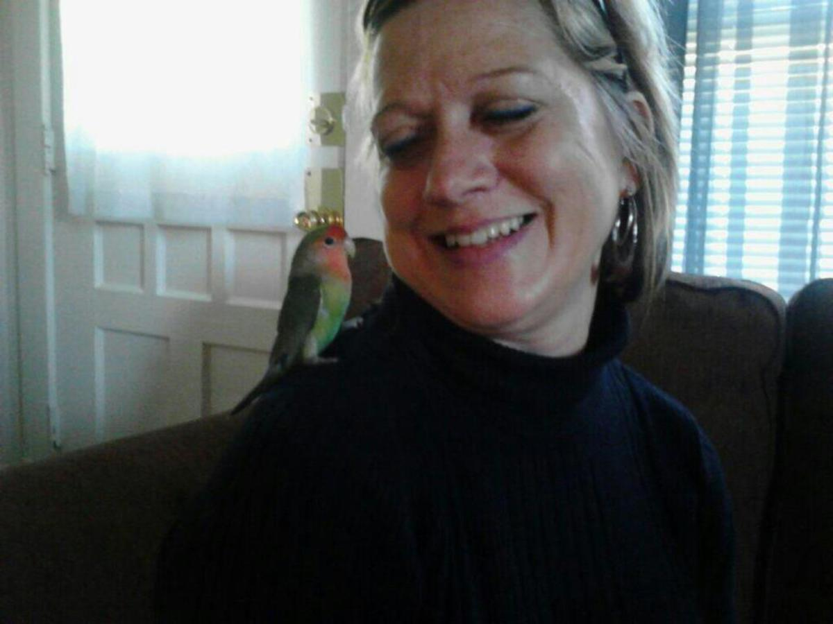 I have never been snuggled by a bird before, but Gregory is as snuggly as lovebirds tend to be...