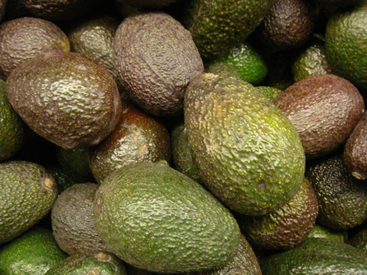 Guacamole is a very healthy, nutritious, and paleo treat.