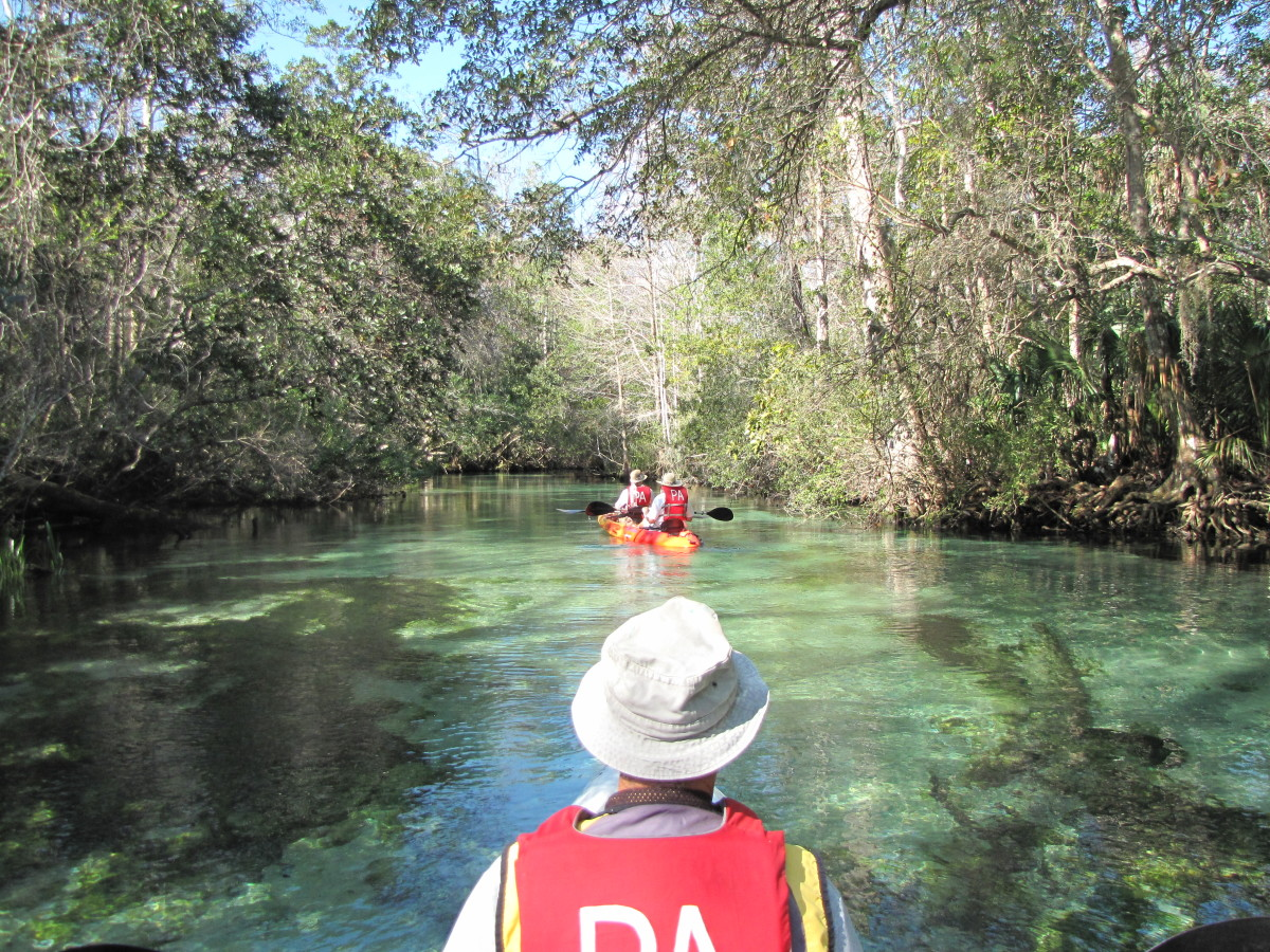 Kayaking the Weeki Wachee River