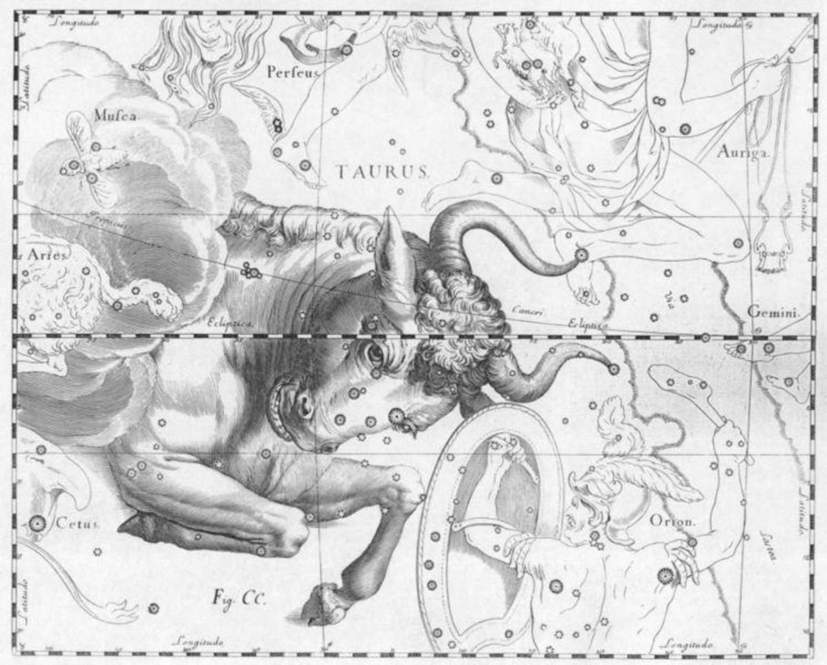 The Bull is the symbol for the Zodiac sign, Taurus which could explain the stubborn part of the personality.