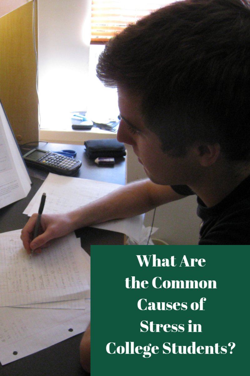 What Are the Common Causes of Stress in College Students?
