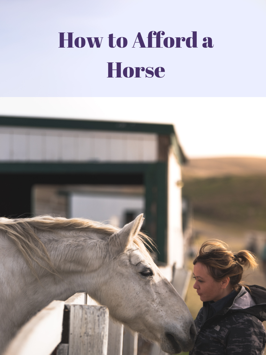 There's an unbreakable bond between a young person and their horse.