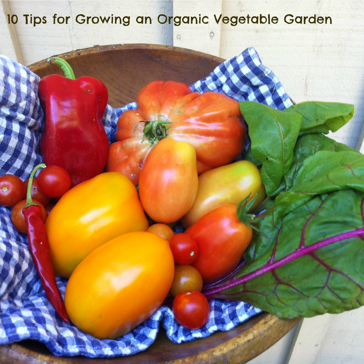10 Tips for Growing an Organic Vegetable Garden