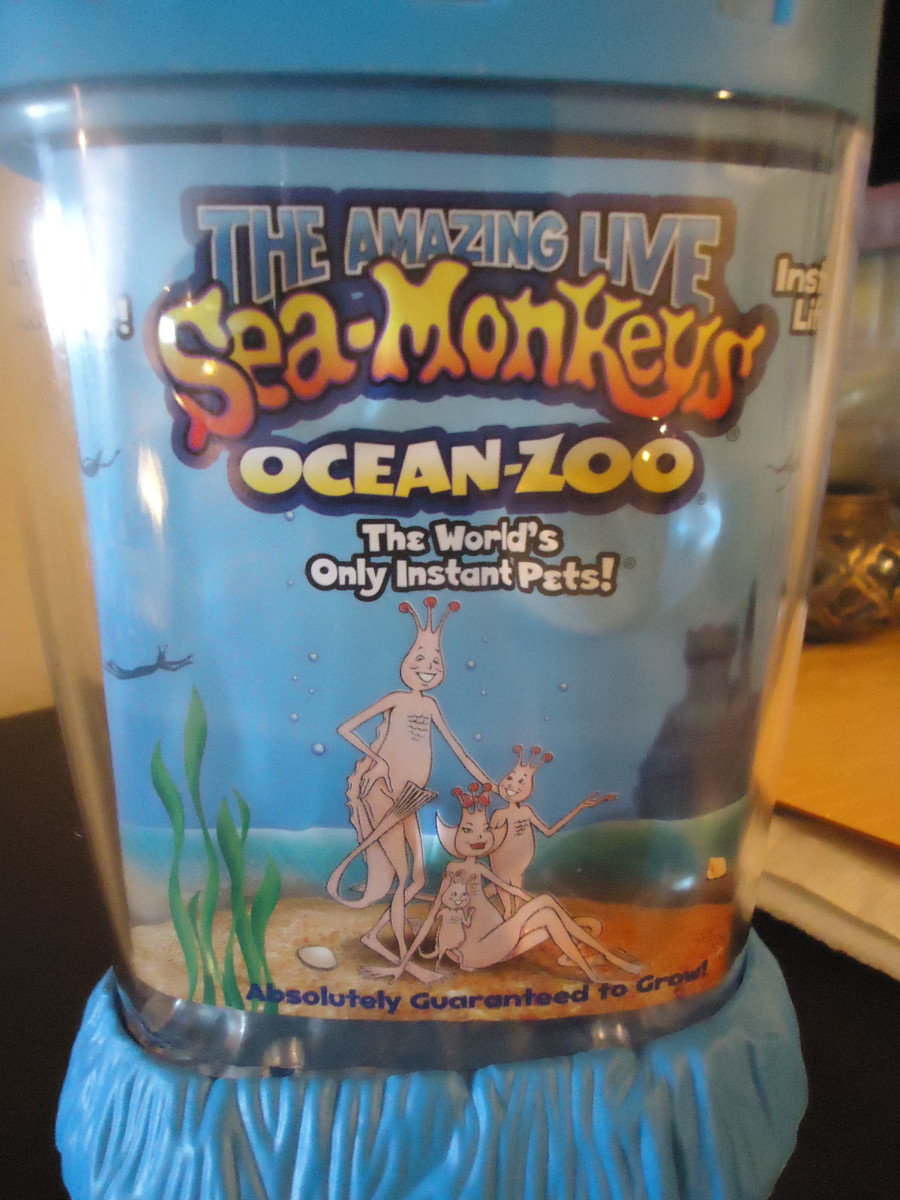 40a308bf5c054a For my 5 year old sons birthday this year, I decided to get him some sea- monkeys. I had the pleasure of owning sea monkeys when I was a kid and I  remember ...