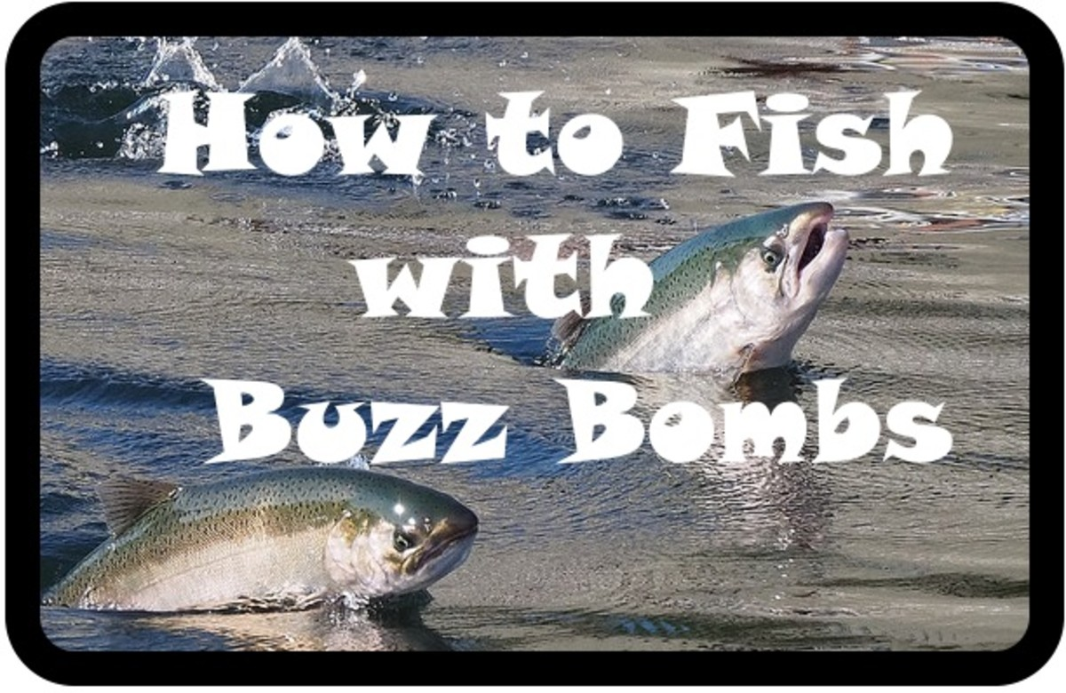 How to Catch Fish With Buzz Bombs