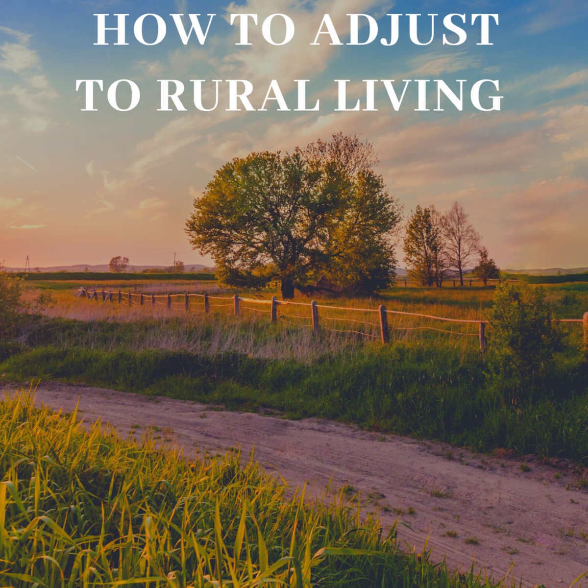 Adjusting to country life can be difficult. Read on to to learn tips and tricks for doing it right.