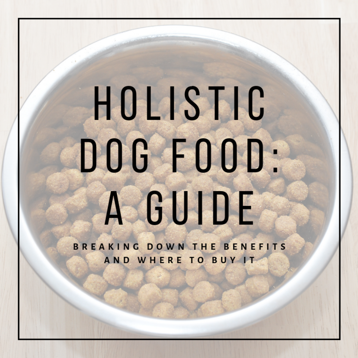 This article will break down just what holistic dog food is, what its benefits are, and where you can purchase it.