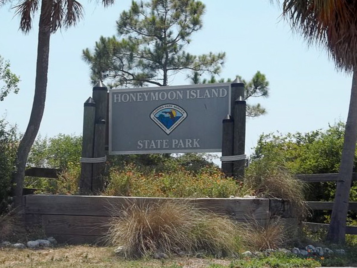 Honeymoon Island State Park:  Dunedin, Florida