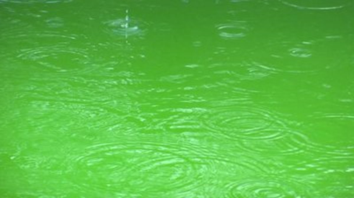 How Does Rain Affect Chemicals and pH in a Swimming Pool's Water?