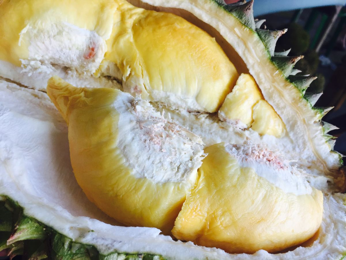 The mother of all weird fruits, the mighty durian.