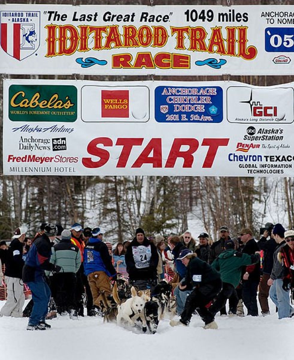2013 Iditarod Winner Mitch Seavey and his Team of Dogs