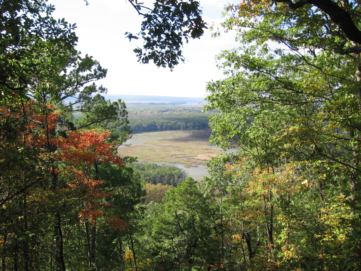 View of the Snake Road area from the hibernation bluffs.