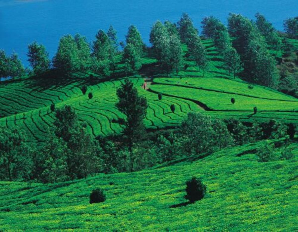 5 Places To Visit In Karnataka During Summer Wanderwisdom
