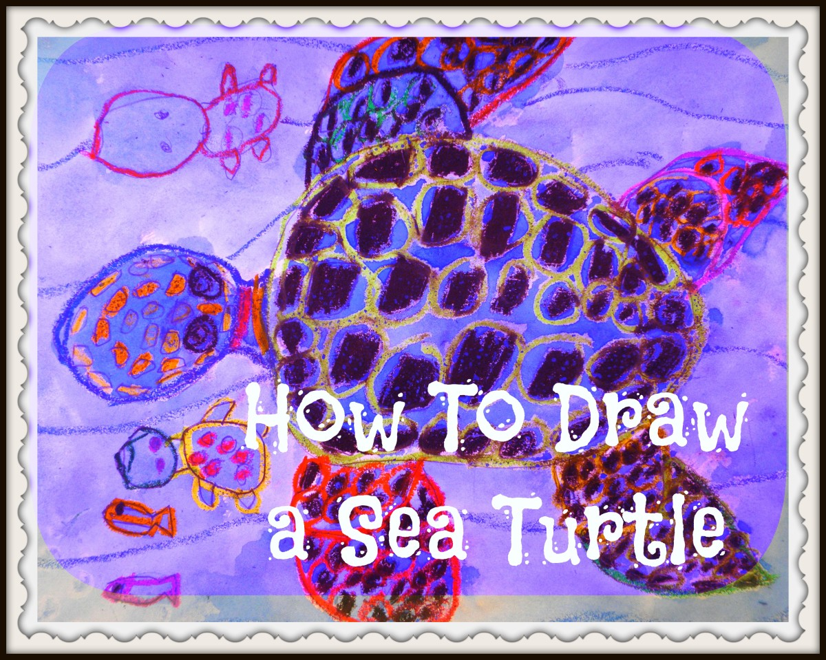 How to draw a sea turtle step by step with art teacher Miss Dorsi.