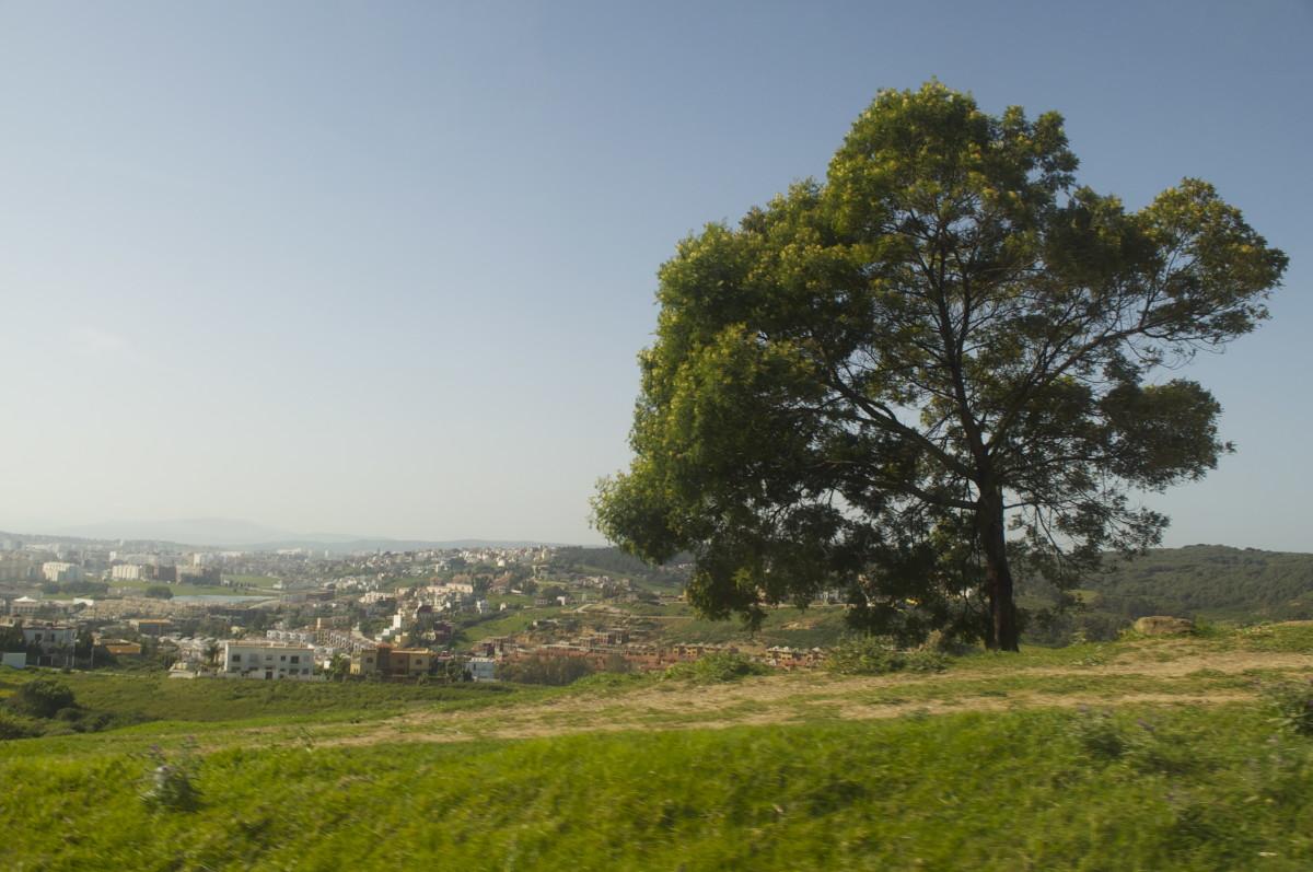 Panoramic tour of Tangier