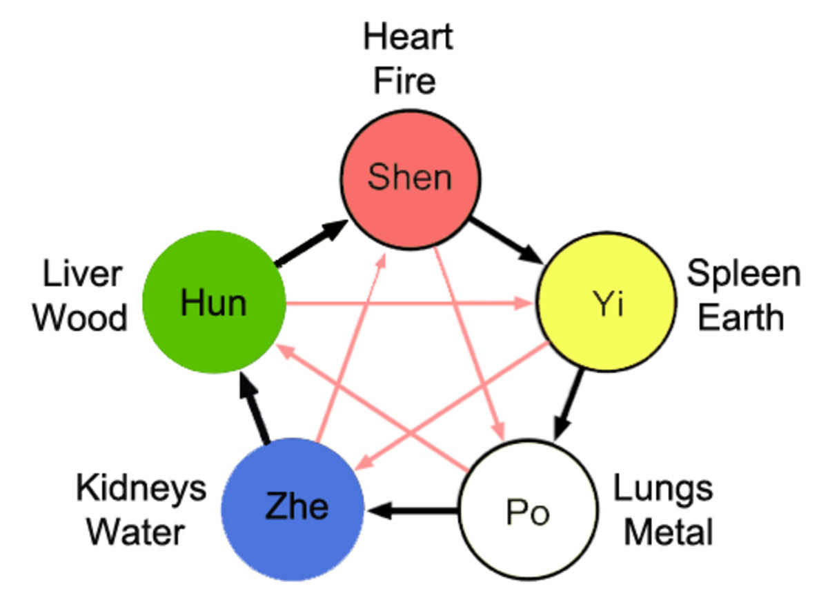 The Taoist five element theory illustrated showing the five energies and associated organs, colors and elements.