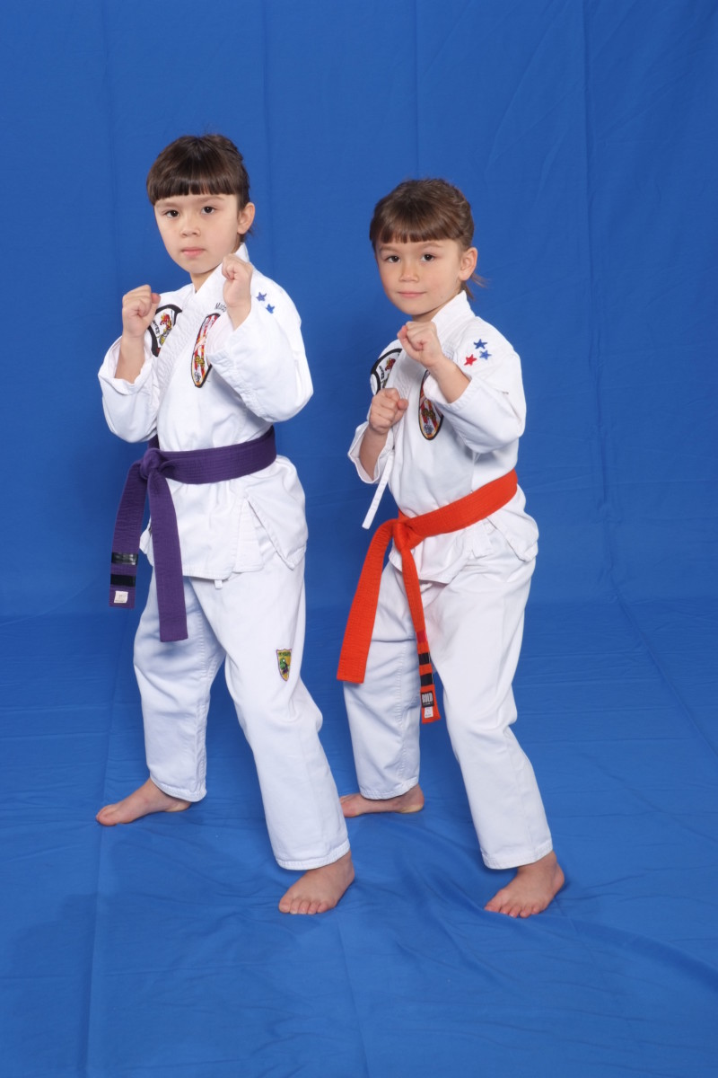 Learn 16 different Karate games for kids
