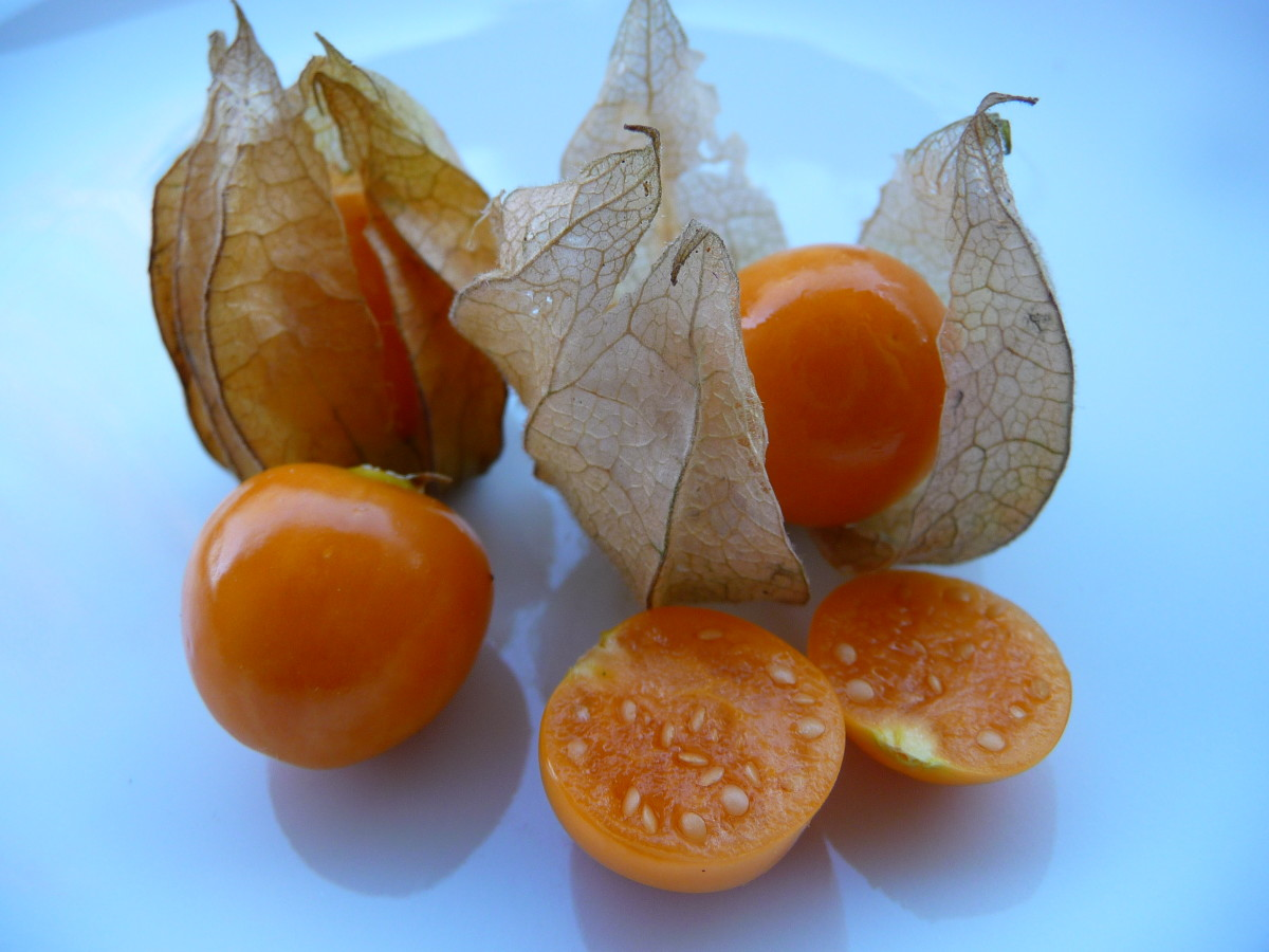 Rasbhari, Cape Gooseberries or Golden Berries.