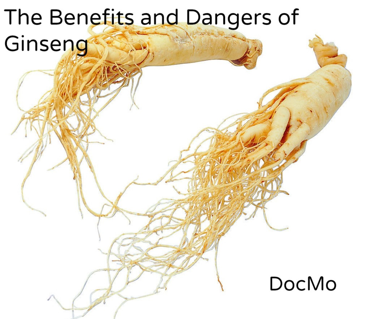 Benefits and Dangers of Ginseng