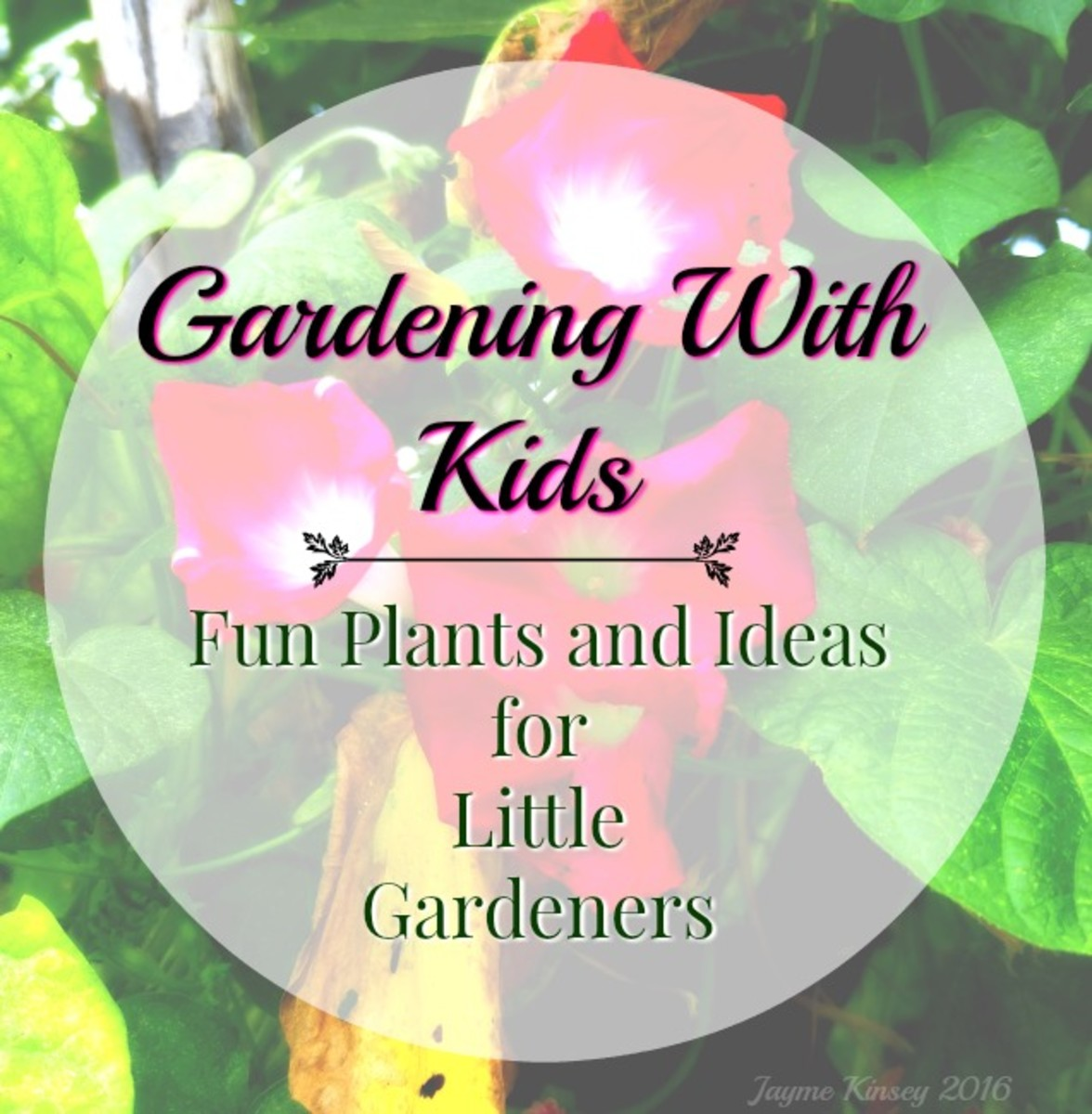 Gardening With Kids—Fun Plants and Ideas for Children