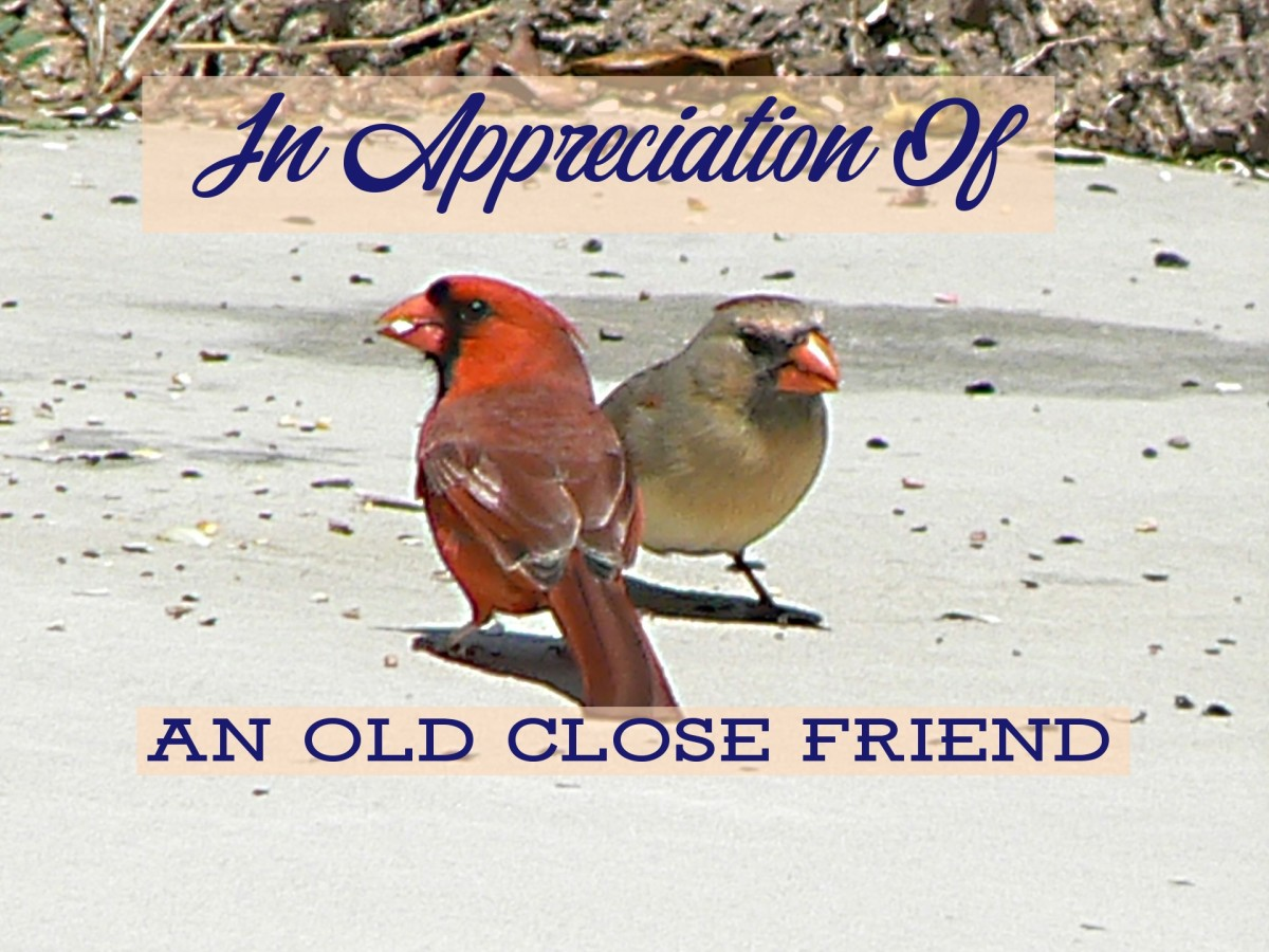 Poem: The Pleasure and Joy of an Old Friendship