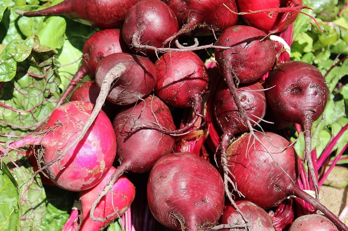 Beets are a good source of nitrates, which the body turns into nitrites and then into nitric oxide.