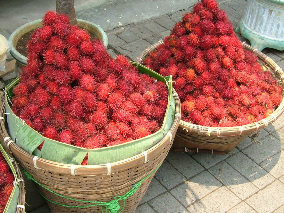 Rambutan Fruit Nutrition Facts and Recipes