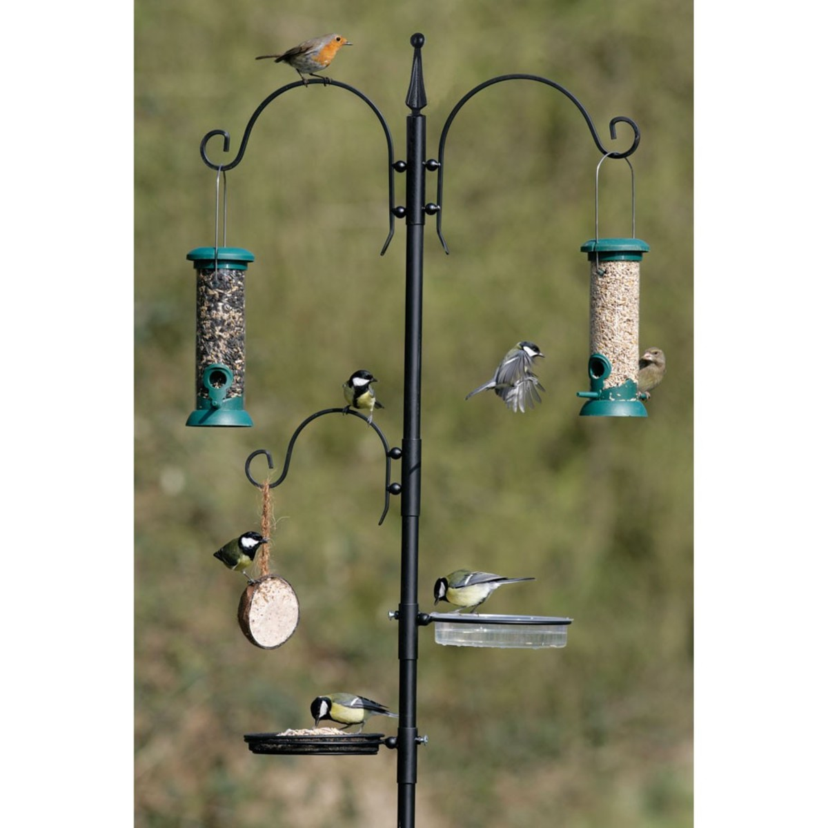 A feeding station for your garden birds