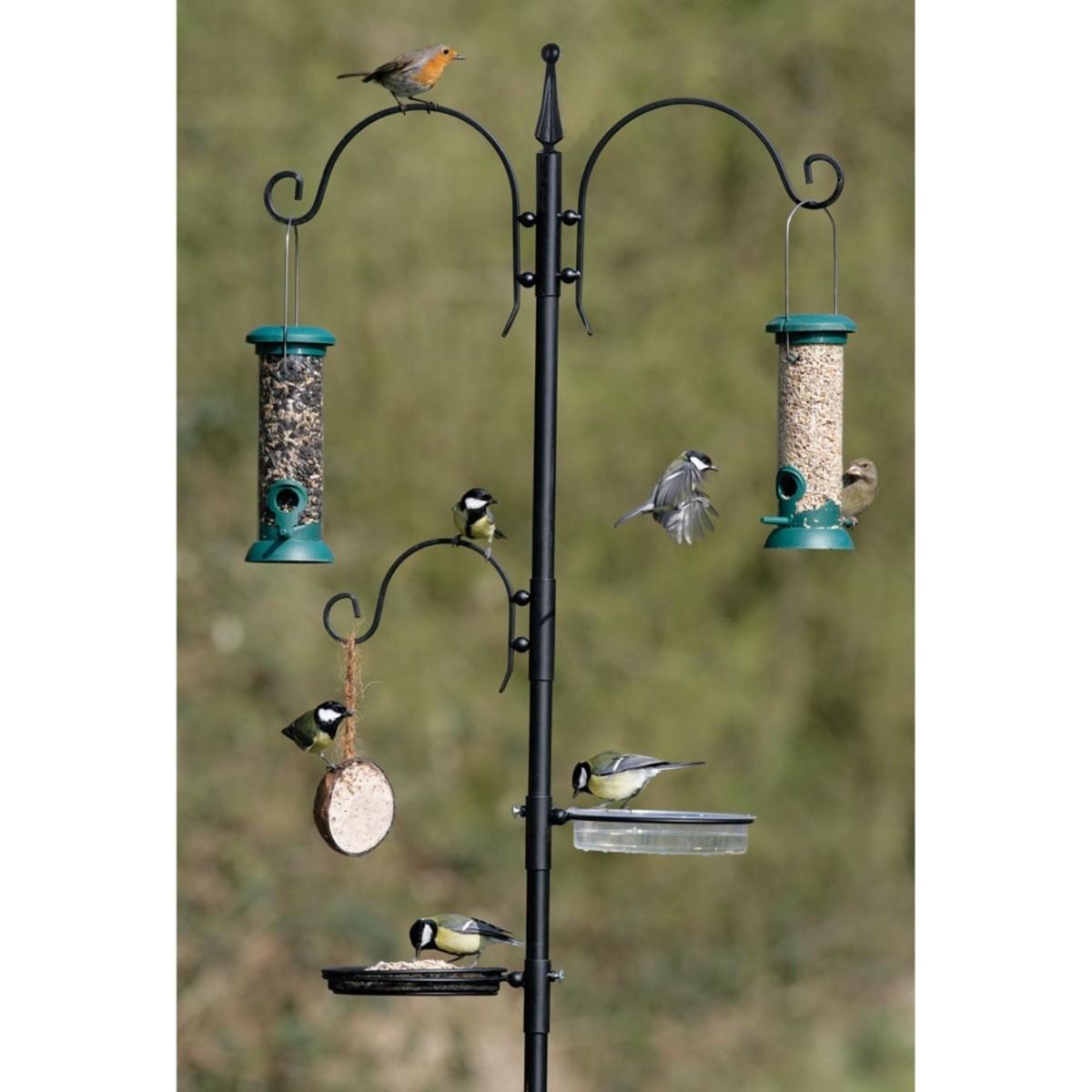 A feeding station for your garden birds