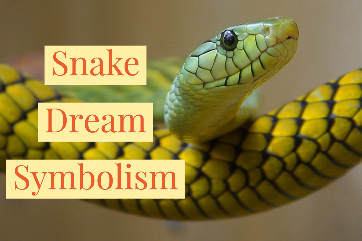 Snakes commonly symbolize fear or transformation.