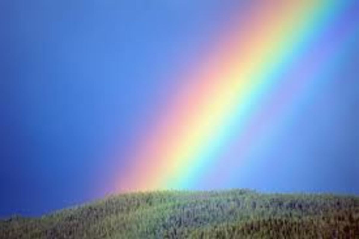 Rainbow Wishes - Haiku